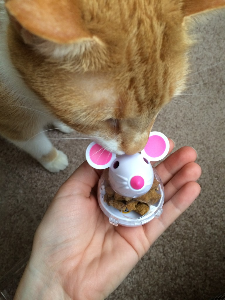 Temptations Snacky Mouse + Influenster -4